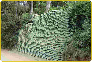 Mediodes hidromantas for Muros verdes naturales